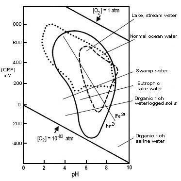 ph orp diagram ph body diagram